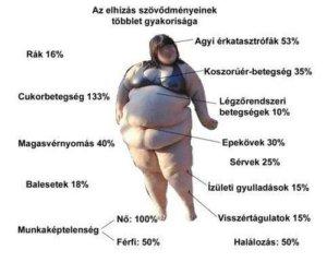 kitozán hatása étrend 40 felett